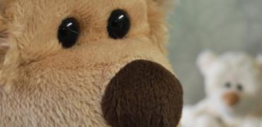 slide_teddy